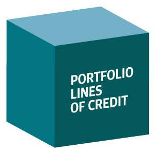 decorative image showing the words Portfolio Lines of Credit