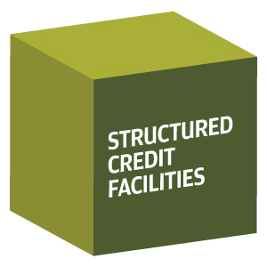 decorative image showing the words Structured Credit Facilities