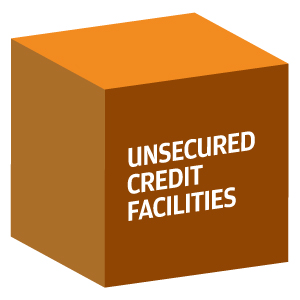 Decorative image showing the words unsecured credit facilities